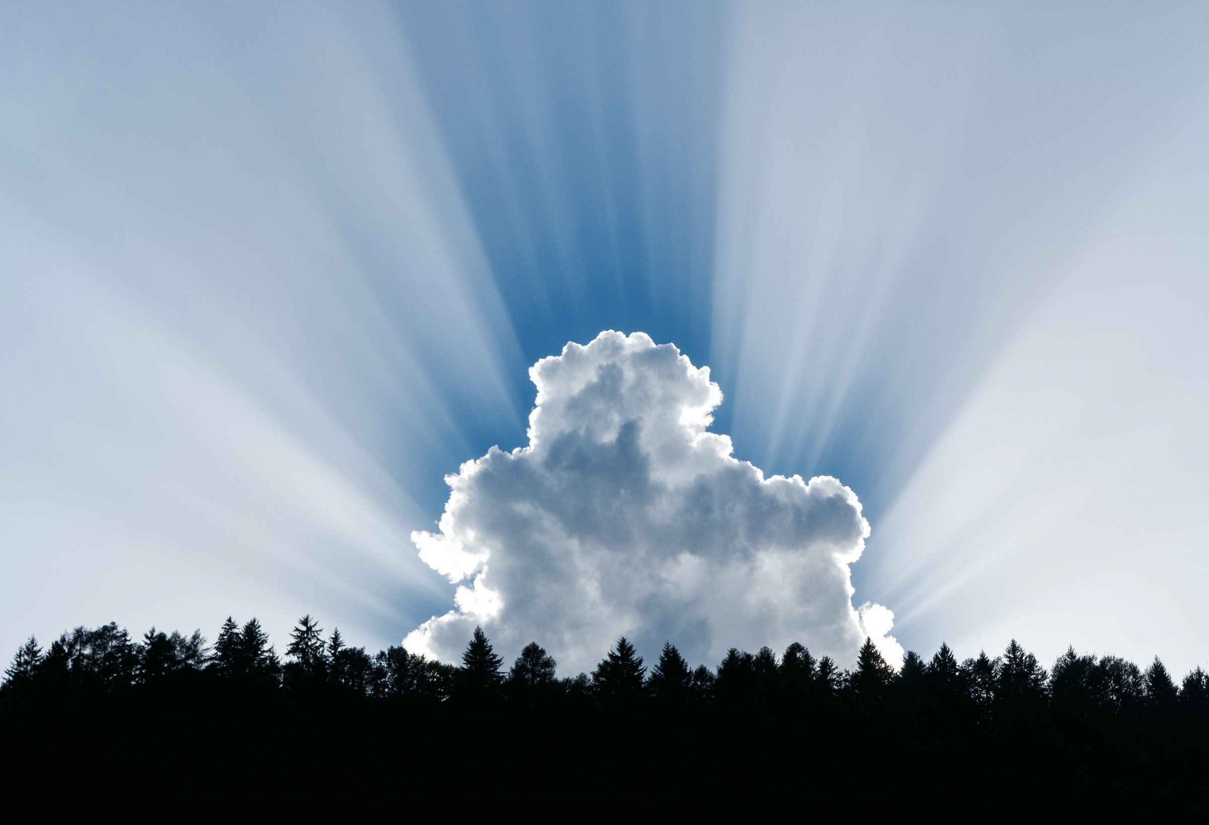 Five Things to Consider When Moving to The Cloud
